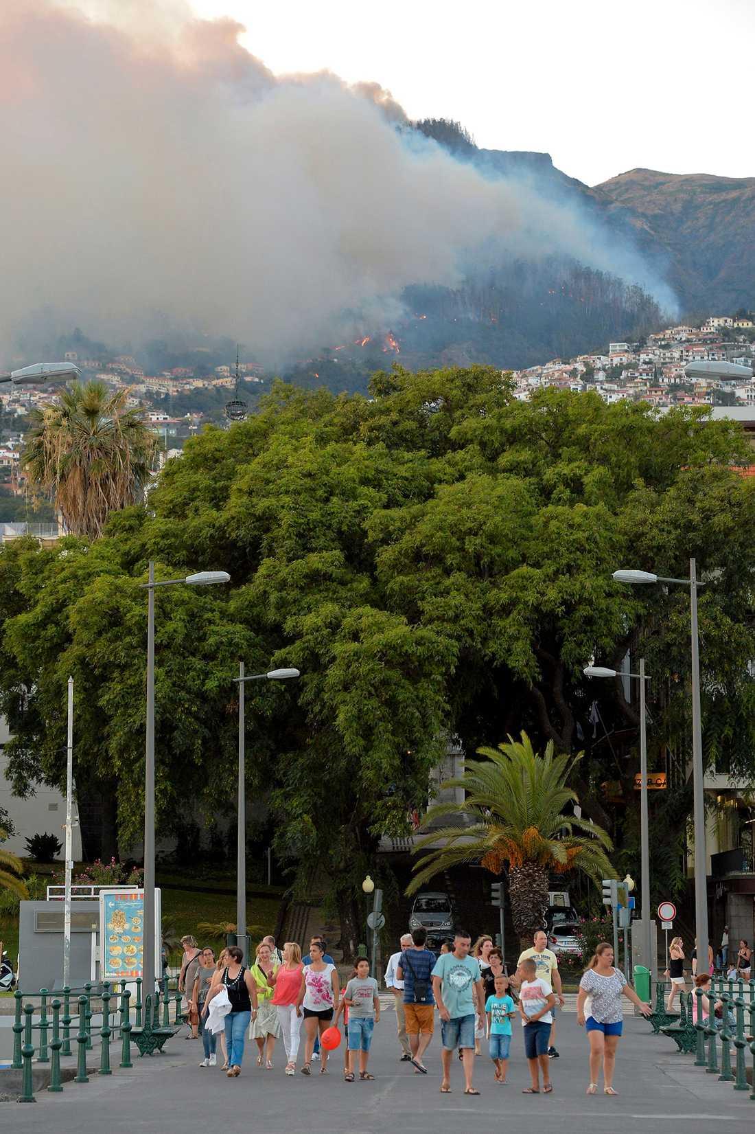 Brand på Madeira, Portugal