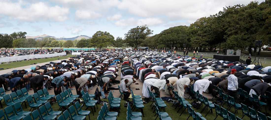 Fredagsbönen hölls i Hagley Park i närheten av al Noor-moskén i Christchurch.