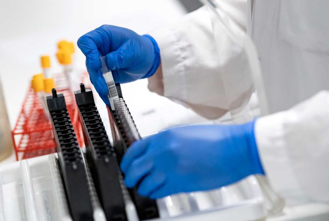 Troligtvis smittades en fjärdedel av en grupp influensapatienter på Sahlgrenska universitetssjukhuset på lasarettet under influensaperioden 2016–2017. Arkivbild.
