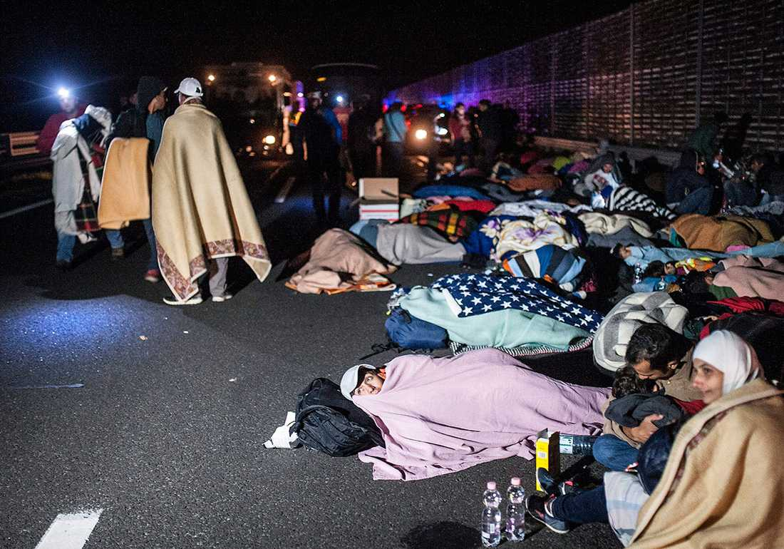 Tyskland räknar med att ta emot upp emot en miljon flyktingar, mestadels från Mellanöstern.  På motorvägen M5 vid Szeged i Ungern samlades i går flyktingar som sökt en väg till väst.