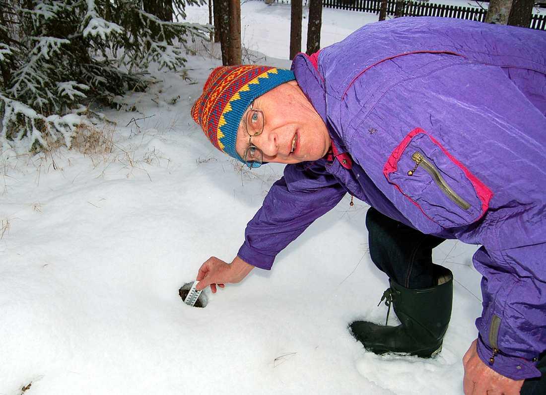 Mystiskt hål. Varje år smälter snön på exakt samma ställe och på samma sätt utanför Jöns Pålssons hus.