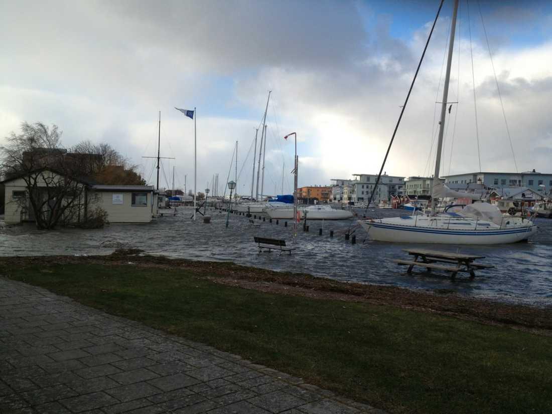 Lomma-hamn drabbades av översvämningar på fredagen.