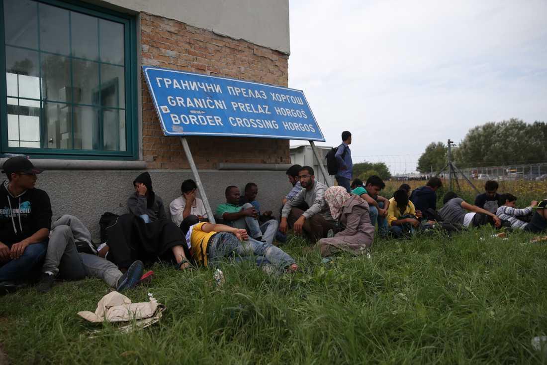 Bara den som kan visa papper att de sökt asyl i Serbien släpps över gränsen.