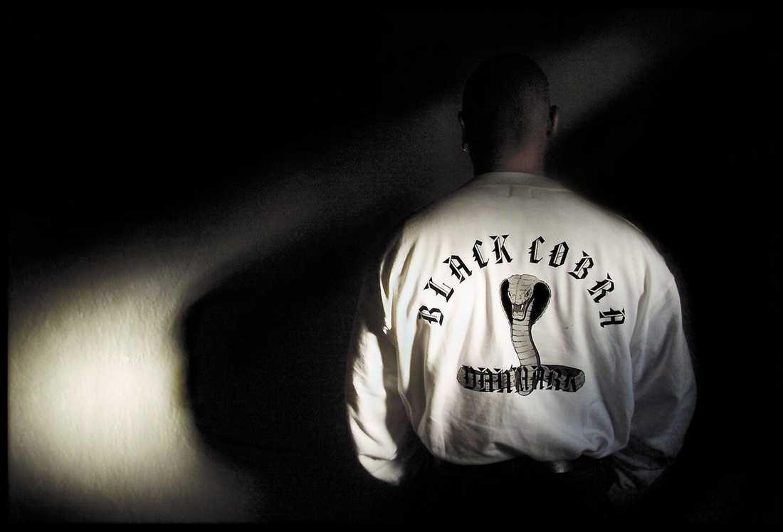 oro för nya strider De senaste dagarna har flera medlemmar av det danska kriminella gänget Black Cobra gripits i Malmö. Nu är polisen orolig för att det blodiga gangsterkriget i Köpenhamn ska sprida sig hit.