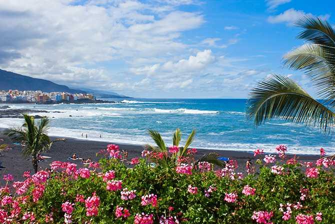 Charter till Kanarieöarna minskar, men allt fler flyger reguljärt till svenskfavoriterna Teneriffa och Gran Canaria.