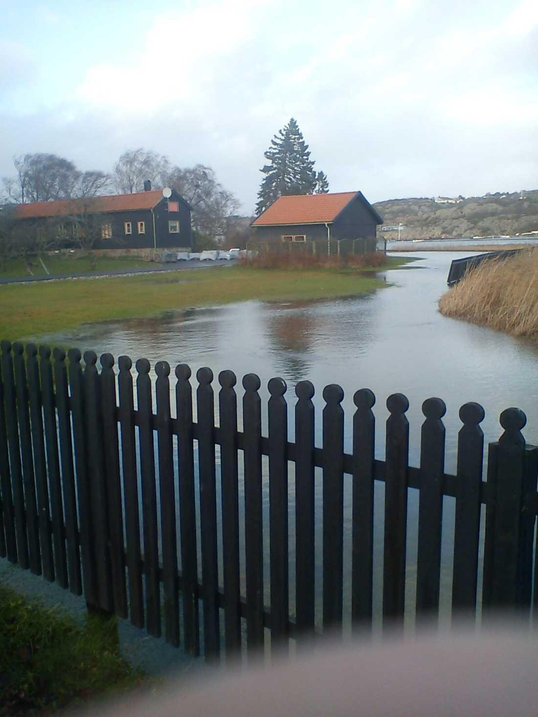 Översvämmad tomt I Kullavik söder om Göteborg har havsvatten trängt upp på tomter nära havet.