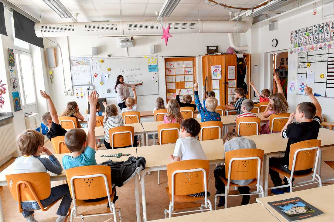 Rektor Linnea Lindquist har skrivit en bok om skolsegregationen, som hon menar ökar av den stora ökningen av vinstdrivande skolkoncerner i Sverige.