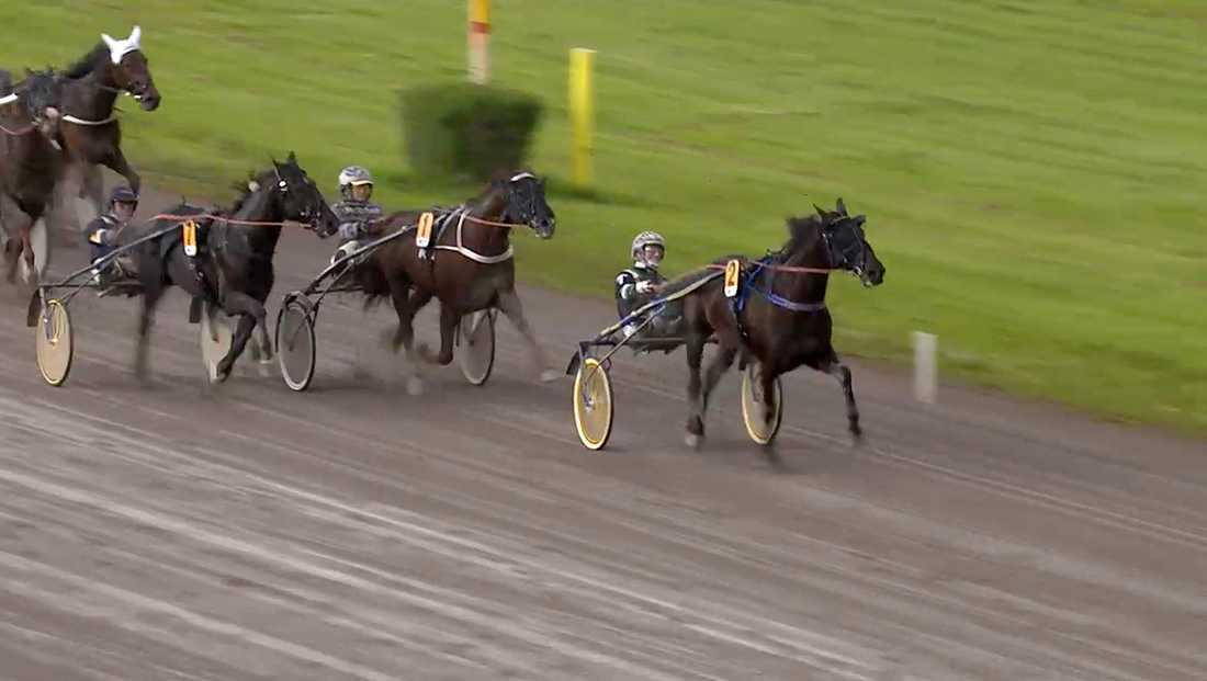 Här vinner On Track Piraten Midsommarloppet på Rättvik och tar första segern någonsin över Nuncio, som slutade trea.