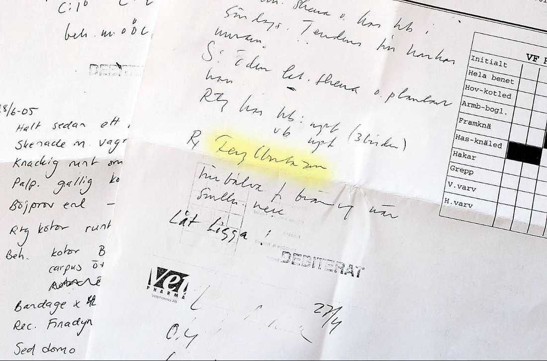 Antecknades i journalen … I hästens journal har veterinären skrivit att den bland annat har behandlats med det cancerframkallande läkemedlet fenylbutazon (markerat med gult).