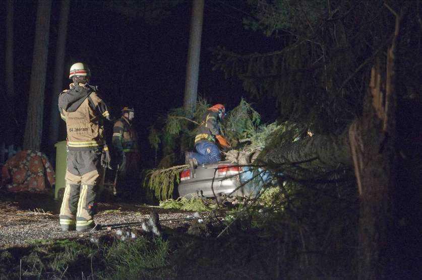 Ett träd blåste ner över en personbil i Åby, utanför Norrköping.