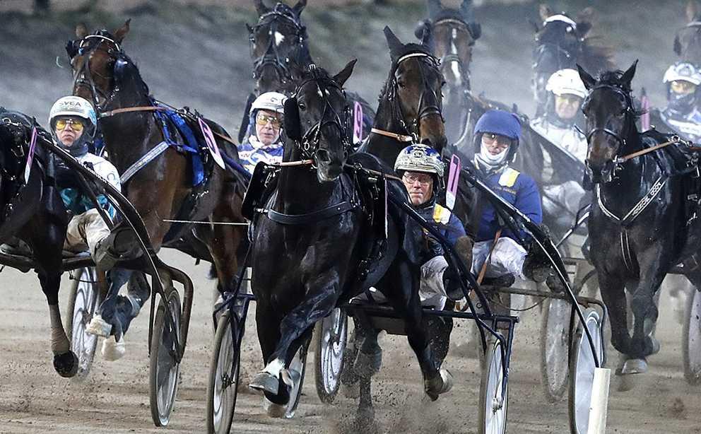 Nuncio var tillbaka som vinnare på V75 och Sportbladets travkrönikör Mattias Karlsson var imponerad.