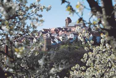 Från autobahn tar det inte många minuter att nå småstäderna. Här är S:t martin som klättrar uppför vinkullarna i södra Pfalz.