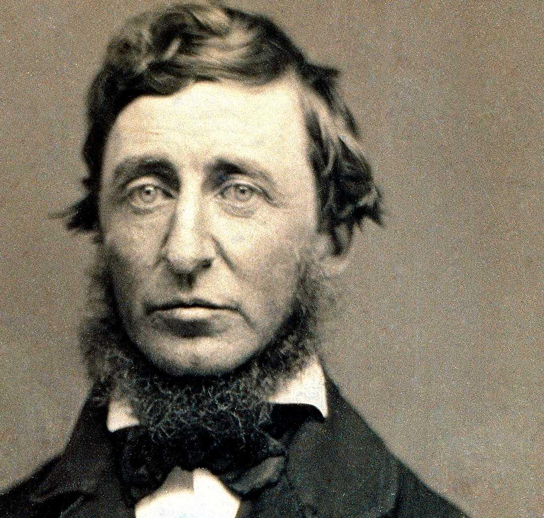 Henry David Thoreau var amerikansk författare, filosof och mystiker. Propagerade i sina skrifter för hur människan borde leva i samklang med naturen och Gud. Thoreaus tankar var viktiga för Gandhi och har även haft stor betydelse för vår tids miljörörelser.