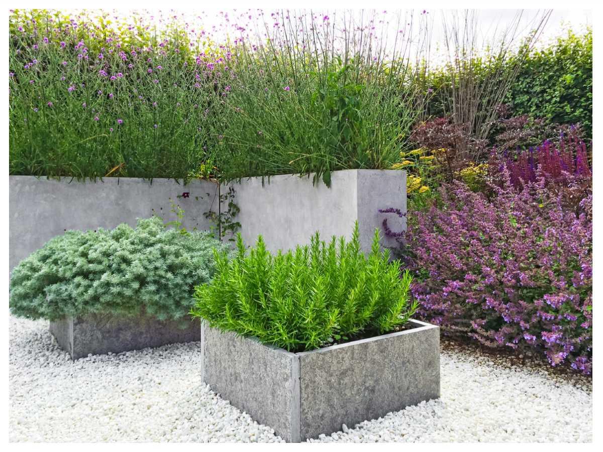 Med några få, torktåliga växter blir trädgården lättskött.