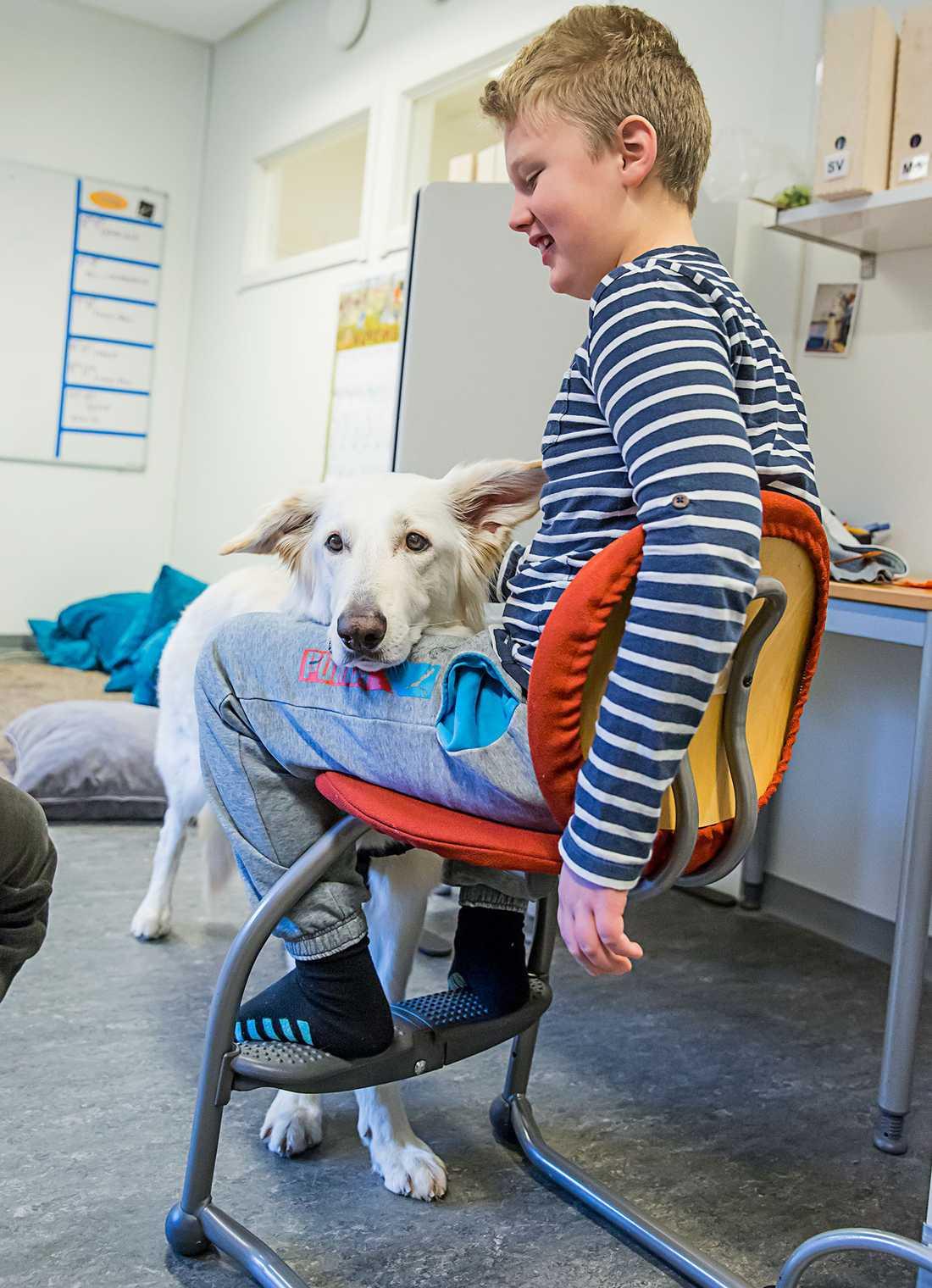 Jordan Ojanne, 10, berättar stolt att även om han inte har hund hemma så har han hund i skolan.