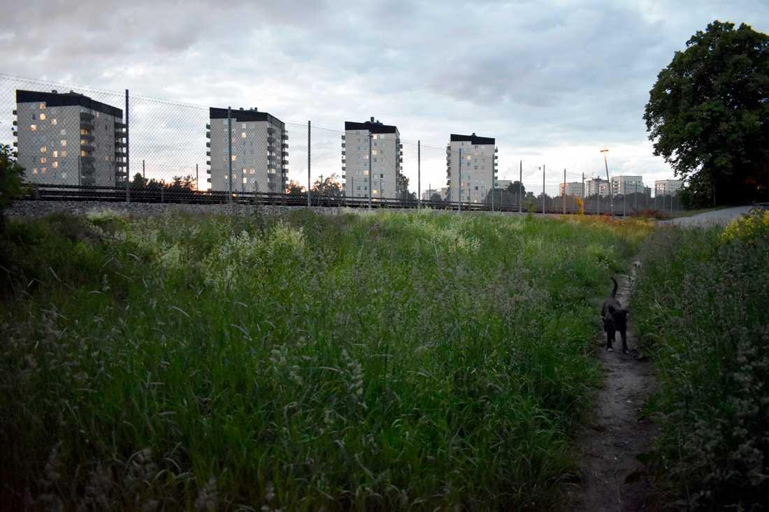 Tre kvinnor har överfallits i Rågsved under de senaste månaderna. Två rubriceras som våldtäkt och ett som olaga hot. Arkivbild.