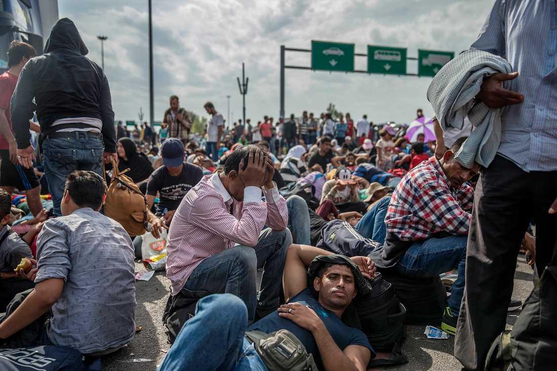 Förtvivlade människor har satt sig ner på motorvägen i protest mot stängningen av gränsen.