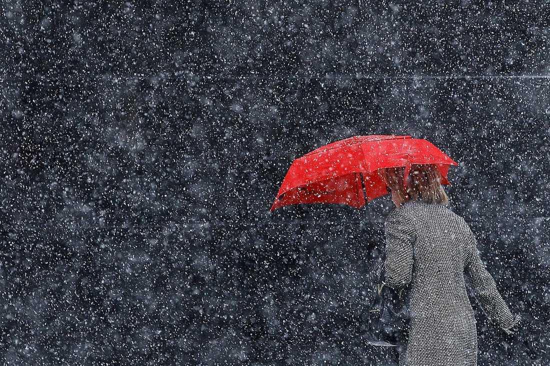 Philadelphia En kvinna trotsade borgmästarens råd och gav sig ut i vinterrusket.