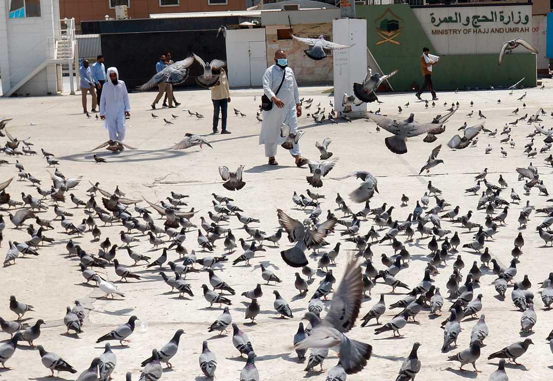 Saudier får tillåtelse att gå utomhus igen, under vissa tider på dygnet. Arkivbild.