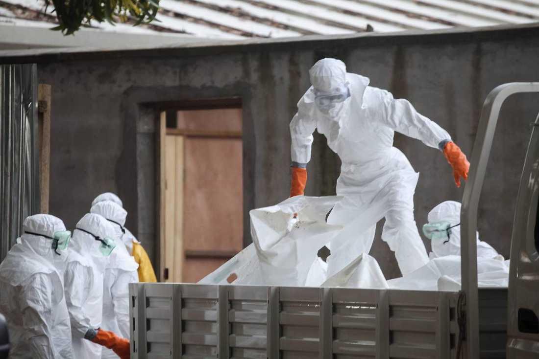 """WHO varnar för """"katastrofala"""" konsekvenser om epidemin fortsätter. Utländsk vårdpersonal är på plats för att bekämpa den fruktade blödarsjukdomen."""