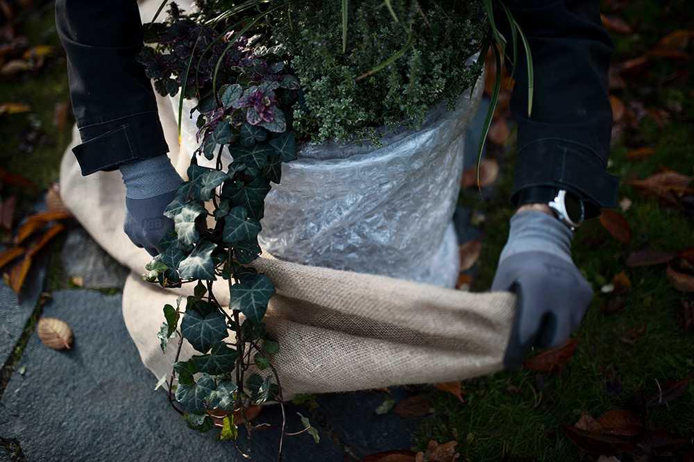 Bind fast med ståltråd och klä kruka o plast med säckväv till exempel.
