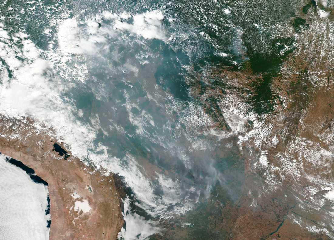 Satellitbild från Nasa på bränderna i Amazonas. Bild från 20 augusti.