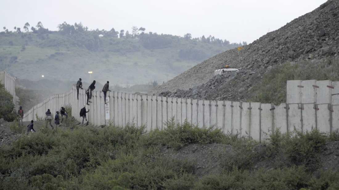 Lokalbefolkningen försöker ta sig över muren kring guldgruvan North Mara i hopp om att hitta sten med guldrester i. Får gruvans vakter tag i dem väntar misshandel och våldtäkter.