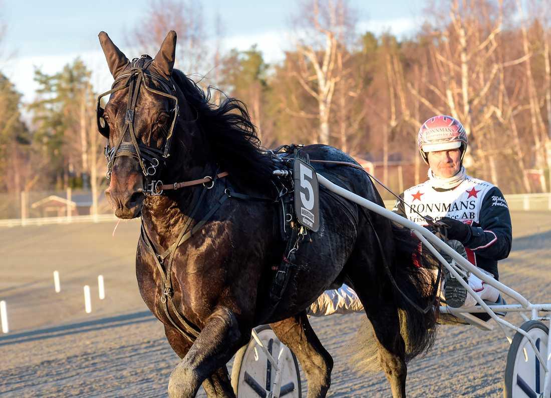 Emil Mollyn och Mikael J Andersson.