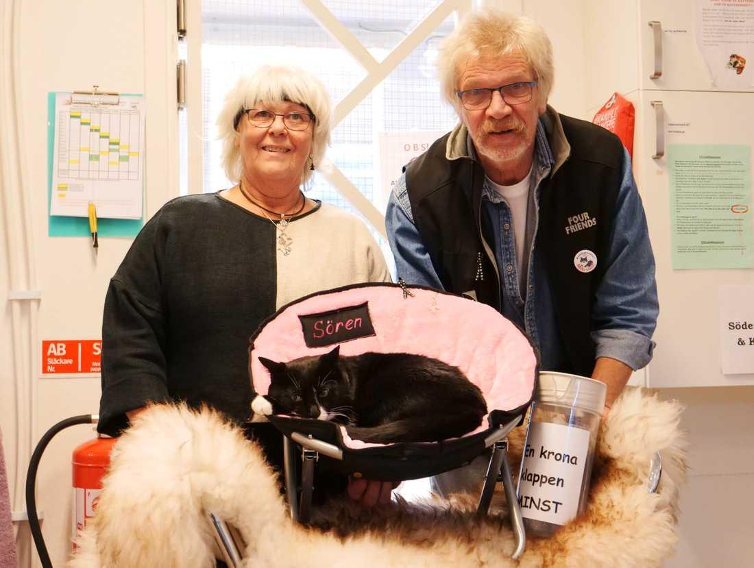 Sören trivdes direkt på bordet vid matte och husse, Ann-Sofie och Lasse Leveau.