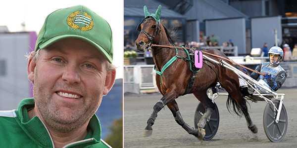 Ulf Stenströmers Handsome Brad är första reserv i Olympiatravet