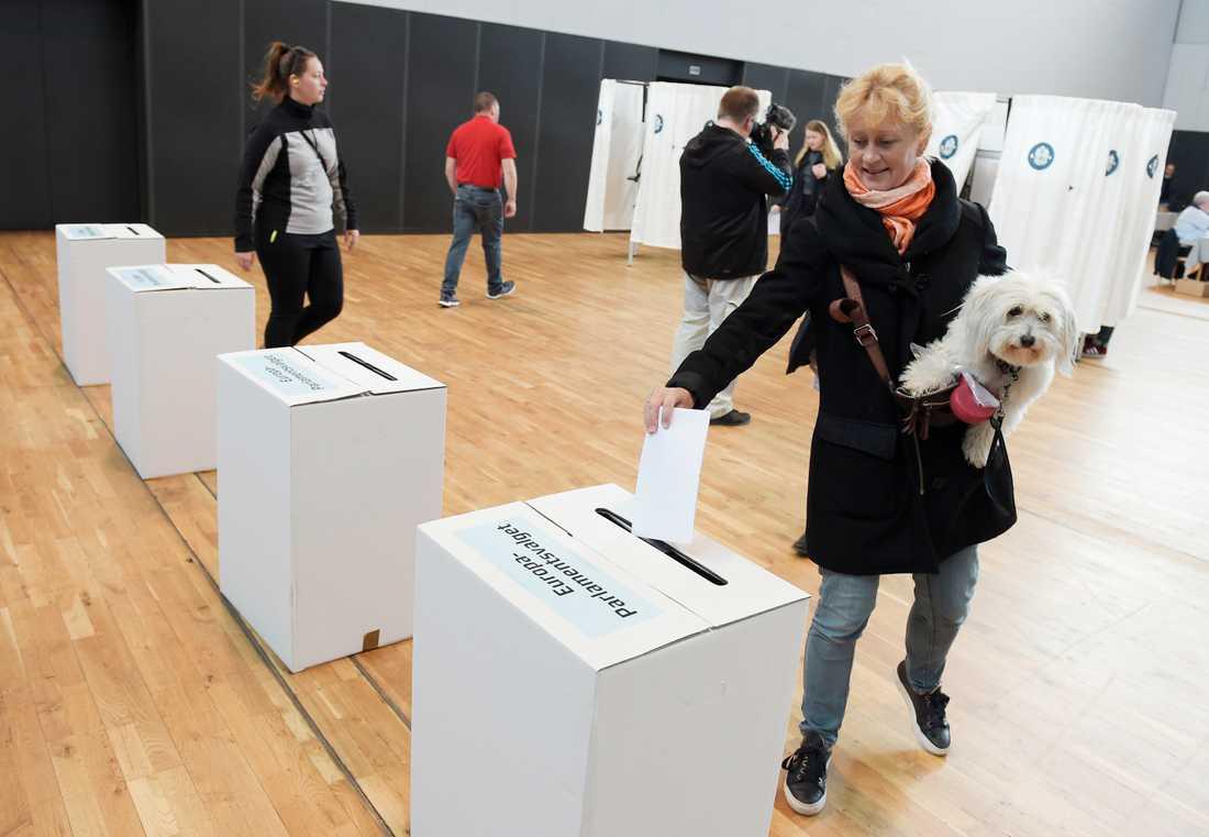 En väljare röstar i Aalborghallen i Aalborg, Denmark.