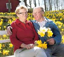 Birgit tycker det är vackert med påskliljor men delar kanske inte Arnes passion fullt ut. Men hon älskar blomsterprakten.