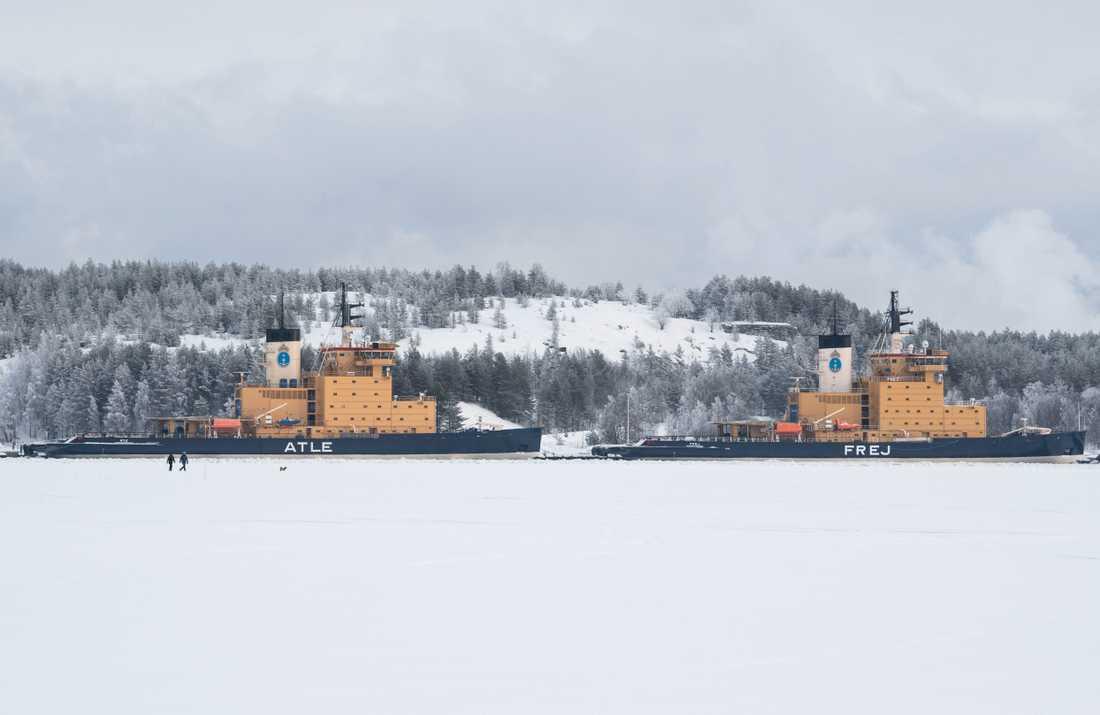 Sjöfartsverkets isbrytare Atle och Frej i hamnen i Luleå 2020.
