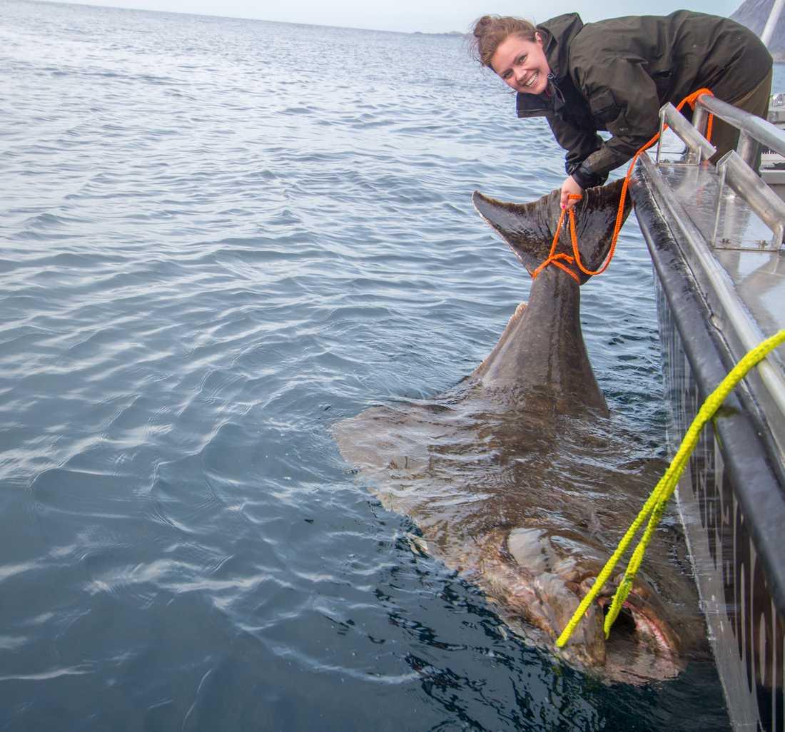 Ericas rekord kommer dock inte registreras, eftersom hon inte ville döda fisken.