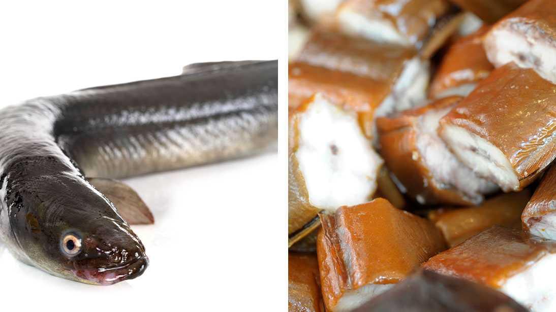 Omkring 21 procent av malmöiterna har ätit ål det senaste året - trots att fisken är svårt hotad.