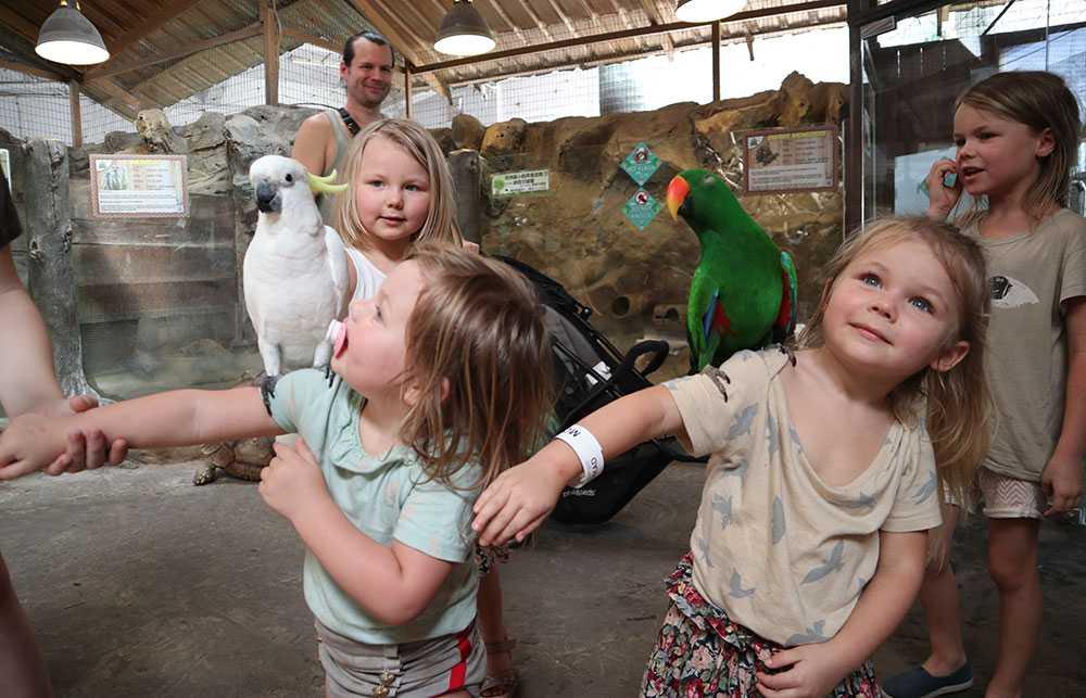 På besök på ett mini-zoo i Kuala Lumpur.