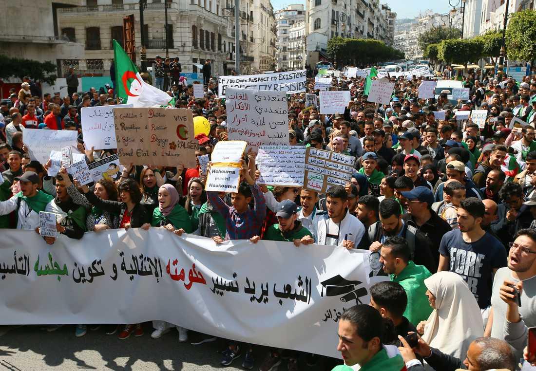 Protester i Alger under tisdagen.