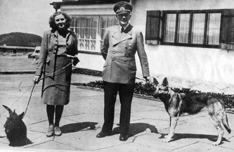 Hitler och Eva Braun i Berghof. Eva Braun med sina två skotska terrier, Negus och Katuschka, även kallad Stasi. Diktatorn gillade schäfrar bäst.