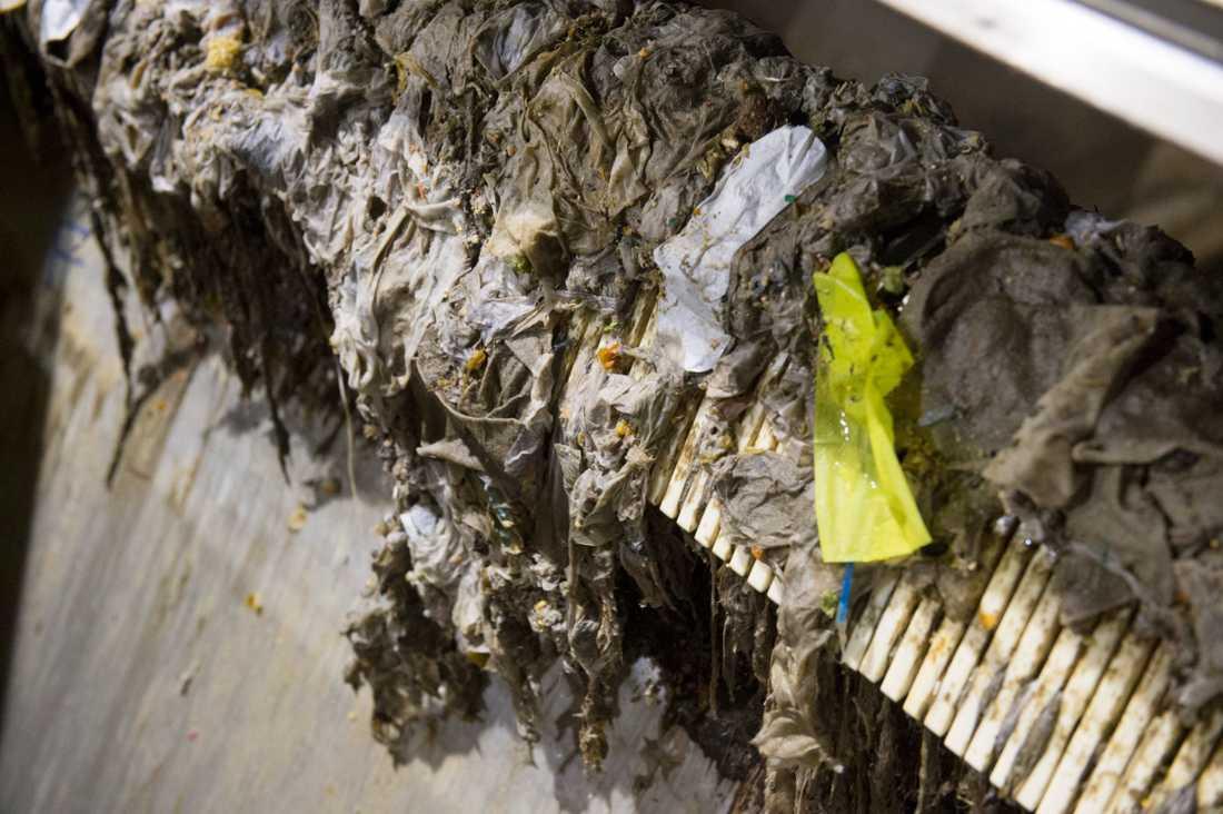 Cirka 15000 ton skräp spolas ner i svenska avlopp varje år, och allt fler munskydd och engångshandskar dyker upp sedan pandemins början. Arkivbild.