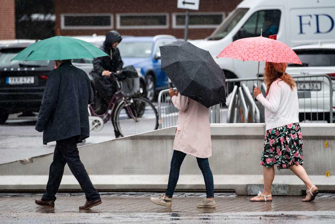 SMHI har utfärdat risk för stora regnmängder i delar av södra Sverige. Arkivbild.
