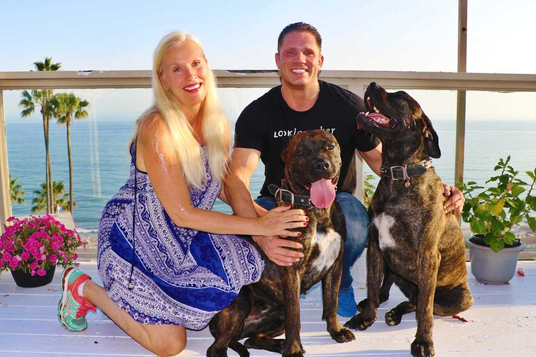 Hundarna lämnas tillbaka till sin ägare Philipp Czernin.