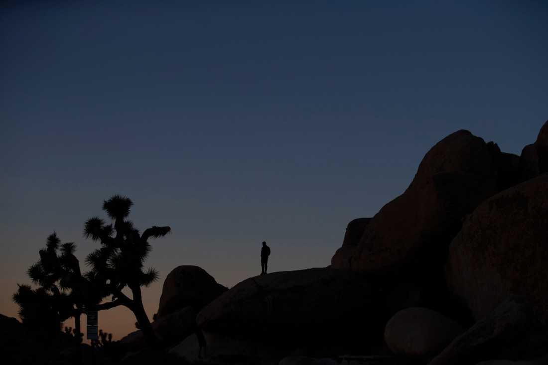 Besökare i Joshua Tree i Kalifornien uppmanades under nedstängningen att ta med sig sitt skräp från nationalparken. En vädjan som inte alla besökare uppmärksammade.