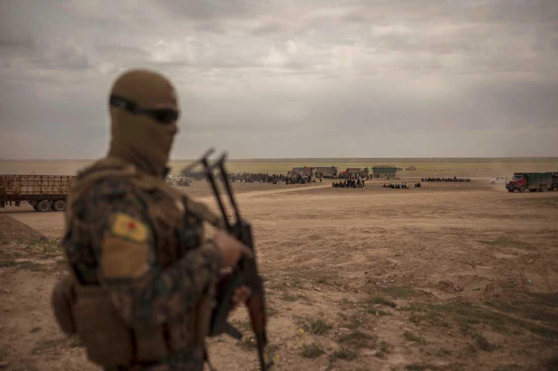En av SDF:s milismän vaktar ett mottagningsområde för civila som evakuerats från al-Baghuz.