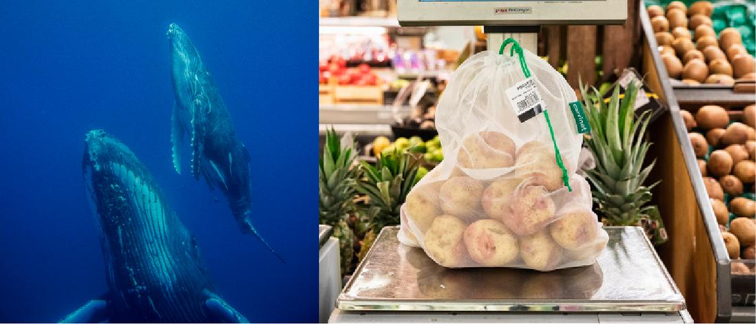 Med rätt påse till potatisen minskar du risken för mer plastavfall i naturen.