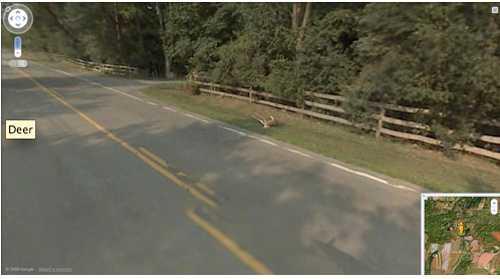 Kiddet ligger skadat vid sidan av vägen - och hela den dramatiska händelsen har fångats av Googlekameran på taket.