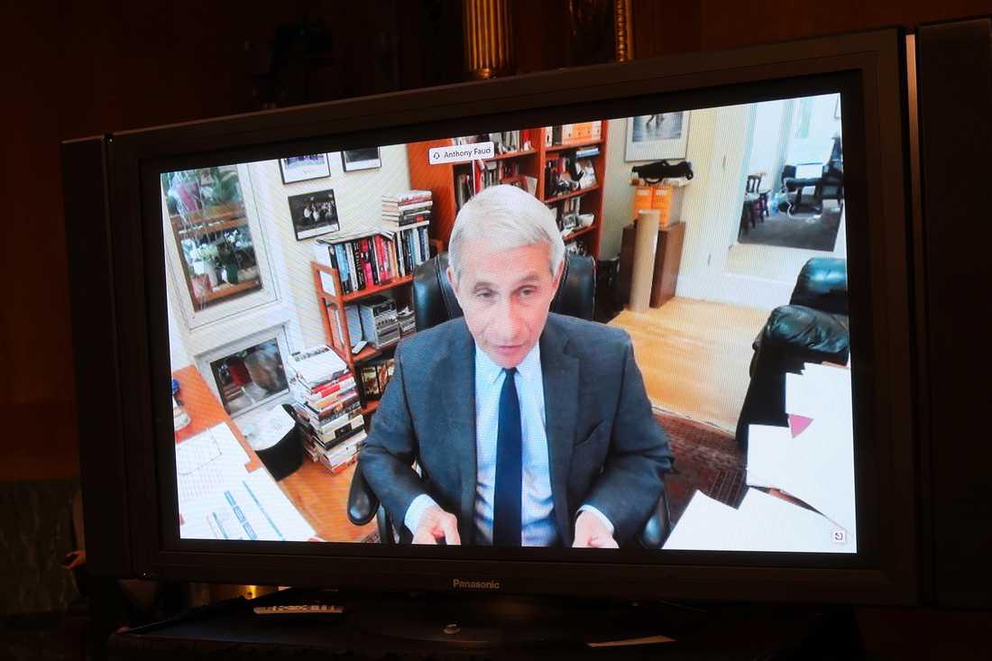 Vita husets smittskyddsexpert Anthony Fauci talade inför senaten i tisdags.