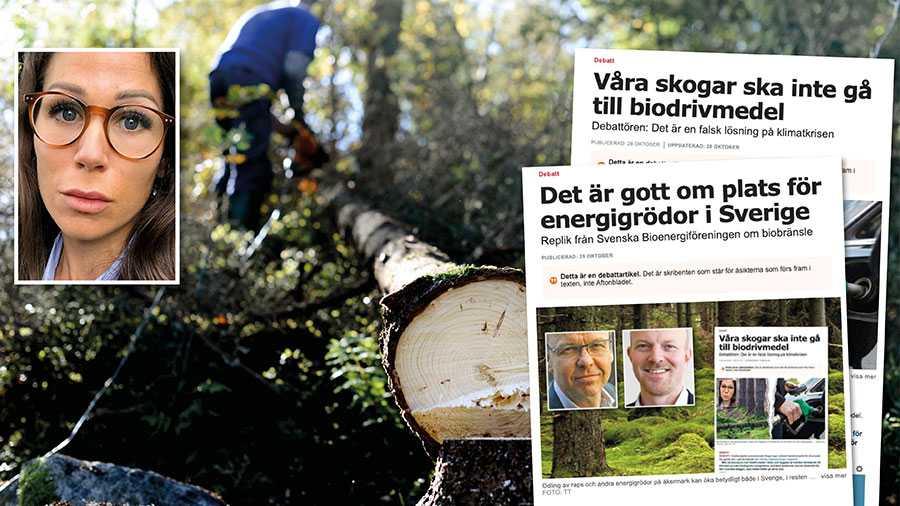 Förstörelsen av svensk naturskog saknar globalt motstycke; över 90 procent av den svenska skogen har redan påverkats av skogsbruk, skriver Lina Burnelius.