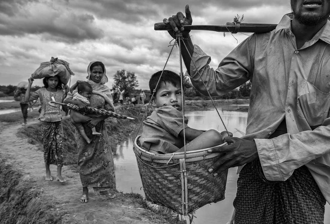 En pojke bärs i korg av en släkting efter att ha passerat gränsen till Bangladesh vid floden Naf.