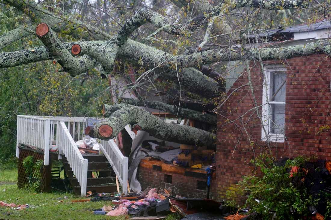 Huset i Wilmington där en mamma och hennes bebis ska ha dött efter att ett träd fallit över dem.