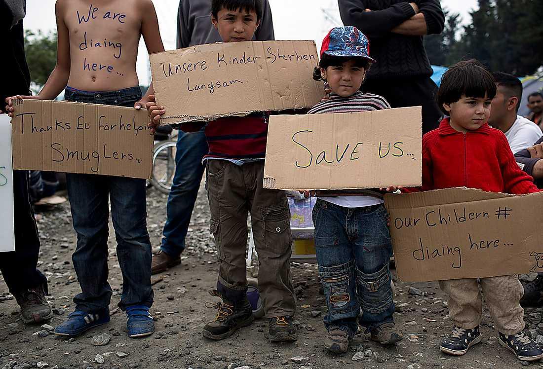 Migranter i Grekland. Många liberaler kräver nu hårdare tag i flyktingpolitiken.